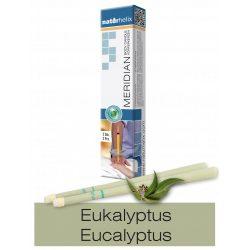 Naturhelix Body Candles with Eucalyptus Oil, 2pcs Pack