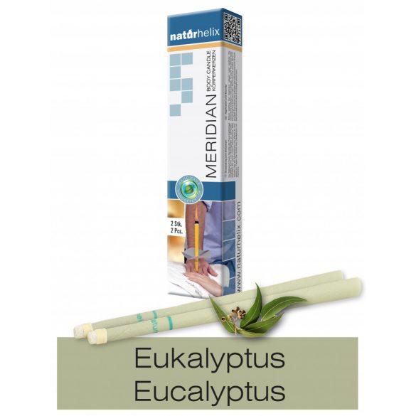 Naturhelix Körperkerzen mit Eukalyptus-Öl, 2er-Packung