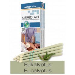 Naturhelix Körperkerzen mit Eukalyptus-Öl, 10er-Packung