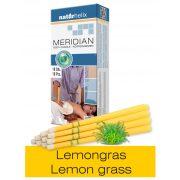Naturhelix Körperkerzen mit Lemongras-Öl, 10er-Packung